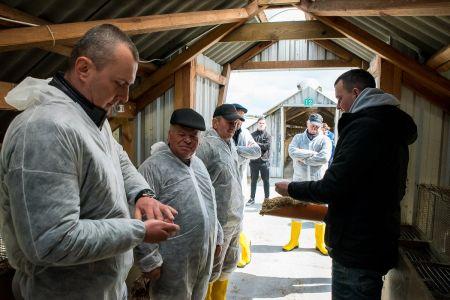 Przełomowe nagrania na polskiej fermie lisów obnażają okrucieństwo przemysłu futrzarskiego