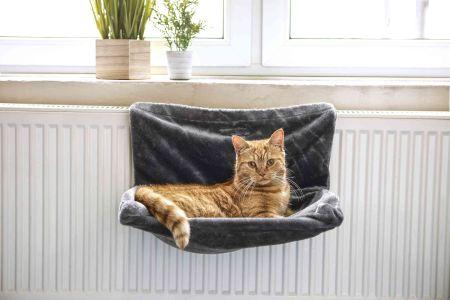 KiK hamak dla kota pluszak odpowiednie do zastosowania na standardowych kaloryferach wymiary 46  30  25 cm 3499
