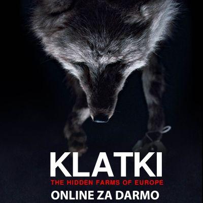 """Film dokumentalny o polskich fermach futerkowych i obrońcach zwierząt """"Klatki"""" dostępny już online dla wszystkich"""