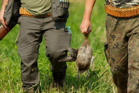 Zaczęła się masakra ptaków – przyrodnicy apelują o wstrzymanie polowań