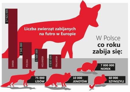 Przełomowa konferencja na temat przemysłu futrzarskiego w Polsce