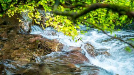 water stewardship homepage